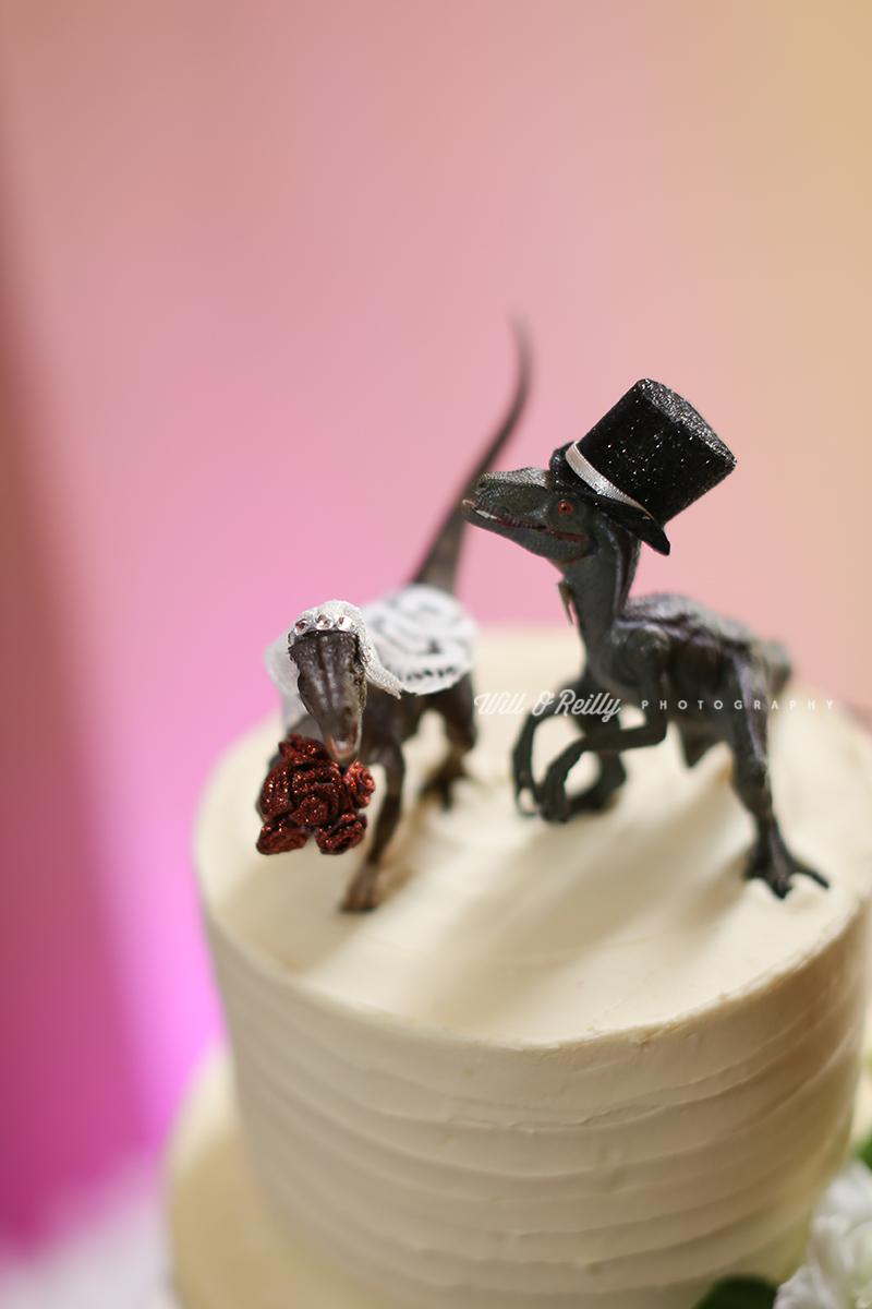 Wedding Photos Dinosaur Cake Toppers