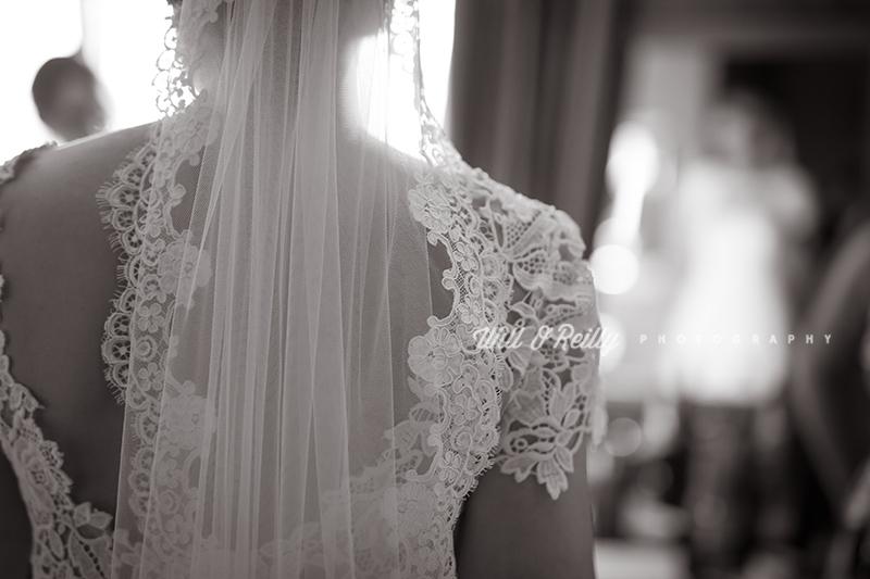 Veil Wedding Photo