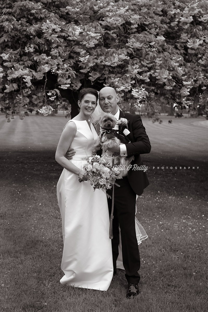 Wedding Photos Tankardstown House