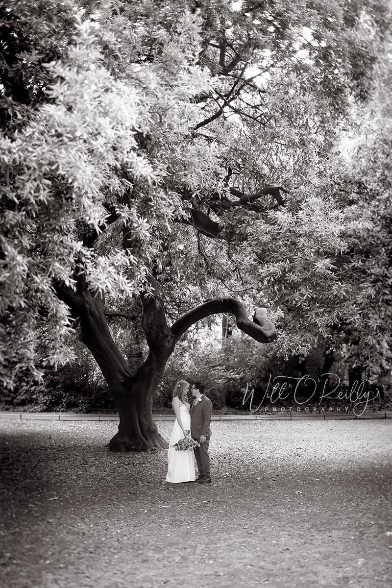 Stephens Green Wedding Photographer
